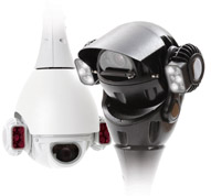 Redvis246Domes